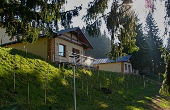 Apartmány Olešnice v Orlických Horách